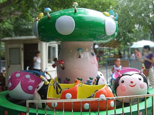Ladybug Paradise Ride