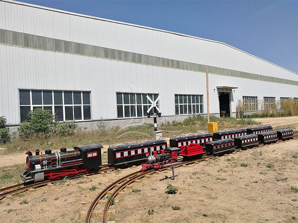 Simulated Steam Track Train Ride